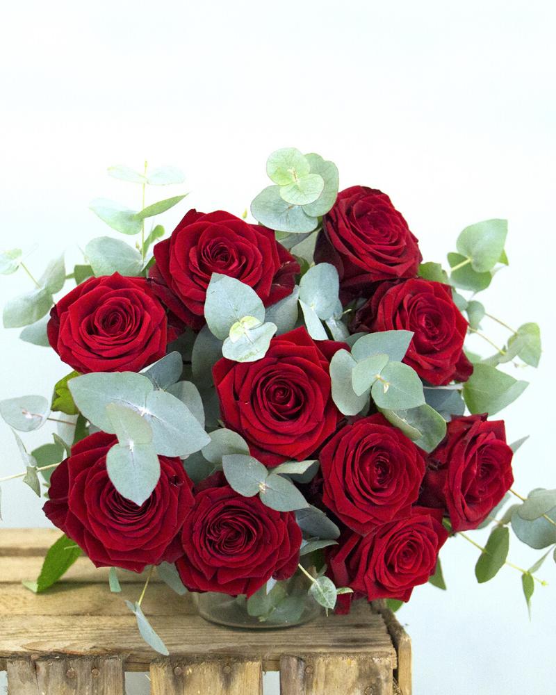 Rose Rouge Jour de Roses